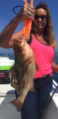 Angling Adventures Red Grouper